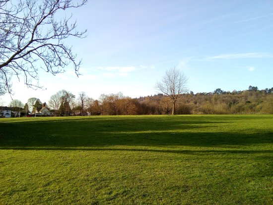 Cofton Park