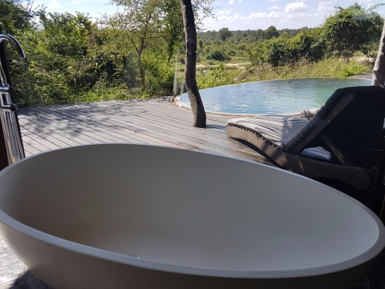 Singita Boulders Lodge: The wall is completely glass so it feels as though you are outside.