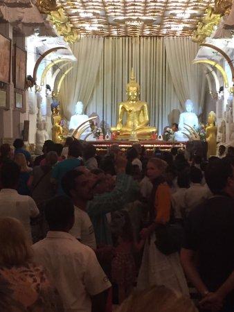 Bentota, ศรีลังกา: Tharanka Tours
