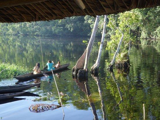 Orinoco Delta, Venezuela: chez les indiens Waraos à proximité du camp