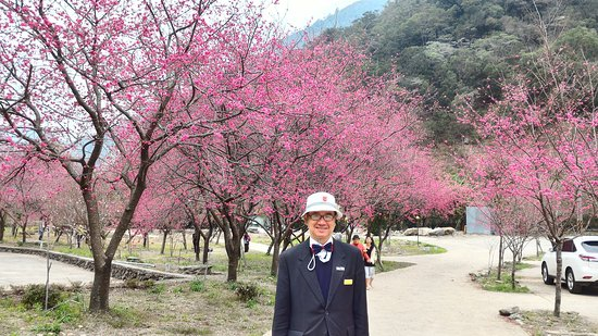 My Taiwan Journey