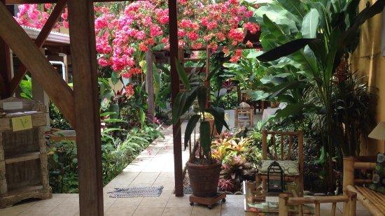 Hotel Pura Vida: photo0.jpg