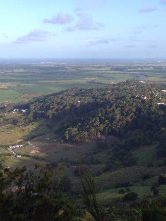 Yandina, Australia: Mt Ninderry