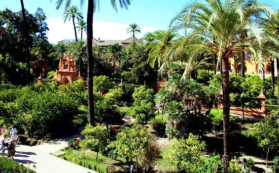 photo4.jpg - Picture of Jardines de los Reales Alcazares, Seville - TripAdvisor