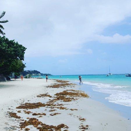 Le Gosier, Guadeloupe: IMG_20170323_191552_378_large.jpg