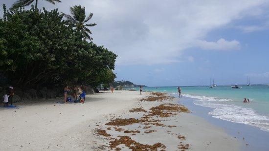 Le Gosier, Guadeloupe: 20170323_125956_large.jpg