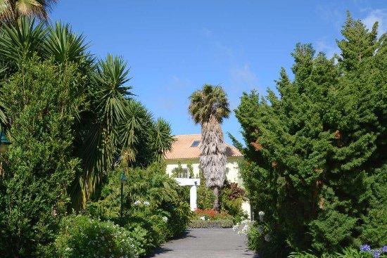 Estreito da Calheta, Portugal: Besondere Zufahrt zur Quinta Alegre