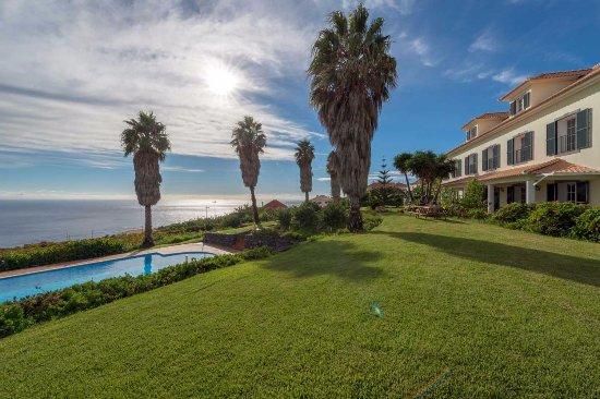 Estreito da Calheta, Portugal: Petticoat-Palmen im Garten