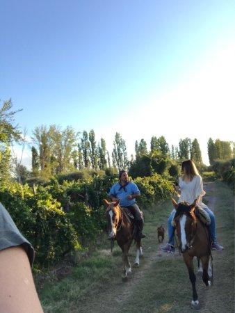 Maipu, Argentina: Excelente experiencia!! Y una gran persona!!! Recomiendo 100%