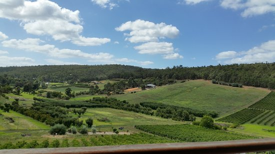 Bickley, Australia: We took my mother there for her 84th birthday lunch, very friendly and relaxed, great wine and f