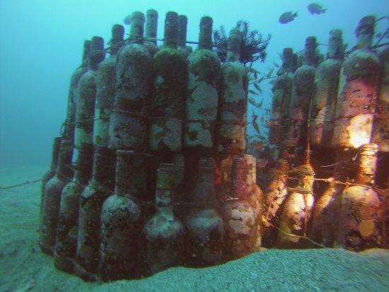 Portulano Dive Resort: photo0.jpg