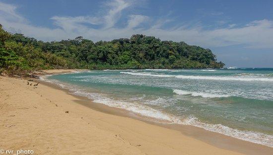 Isla Bastimentos, Panama/Panamá: Wizard Beach, Bastimentos, Bocas del Toro