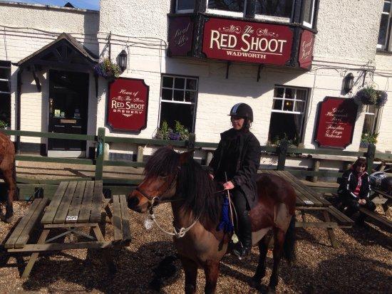 Ringwood, UK: photo0.jpg