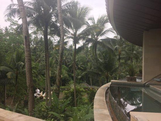 Sayan, Indonesien: photo3.jpg