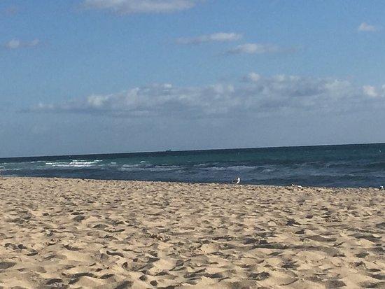 Fort Lauderdale Beach: photo4.jpg