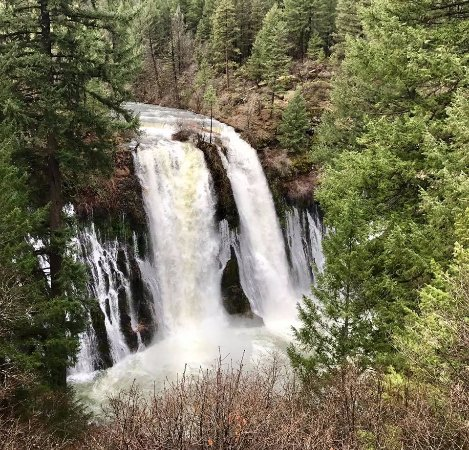 Burney Falls in March