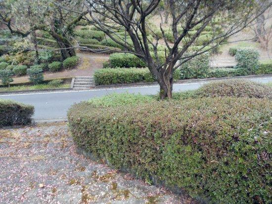 Shogenji Park