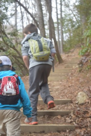 Cashiers, NC: A few of the steps you'll find a long the way to the falls