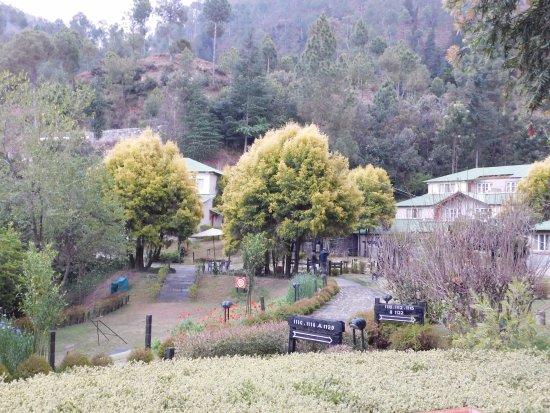 Pictures of Club Mahindra Binsar Valley - Binsar Photos