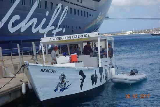Kralendijk, Bonaire: Vom großen auf das kleine Schiff.>Ein individueller erlebnisreicher Schnorchelausflug!