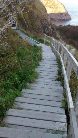 Signal Hill : 시그너힐에서 내려가는 계단 코스