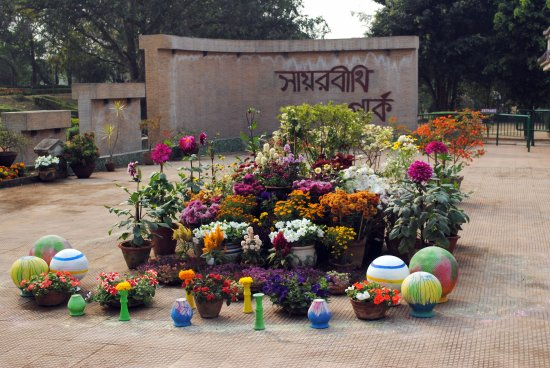 Bolpur, India: Seasonal Flowers in bloom at Sayarbithi