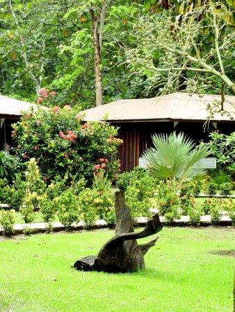 托爾圖格馬瓦巴飯店照片