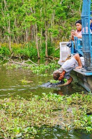 Уэствего, Луизиана: photo1.jpg