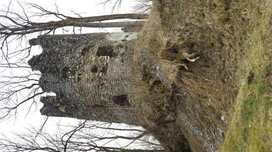 Sonthofen, Alemania: Burg Fluhenstein