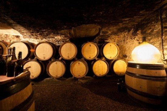 Dégustation dans des caves du XVII ieme en plein coeur de Pommard