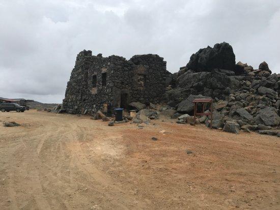 De Palm Tours: The Ruins