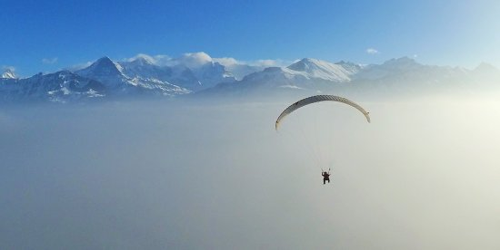 Matten bei Interlaken, Switzerland: Paragliding Interlaken Switzerland