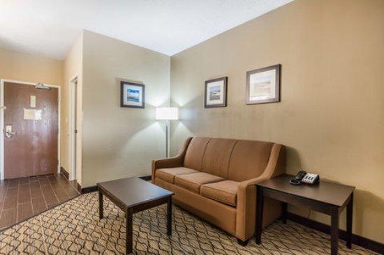 크리스털 인 호텔 앤드 스위트 (Comfort Inn & Suites Crystal Inn Sportsplex ...