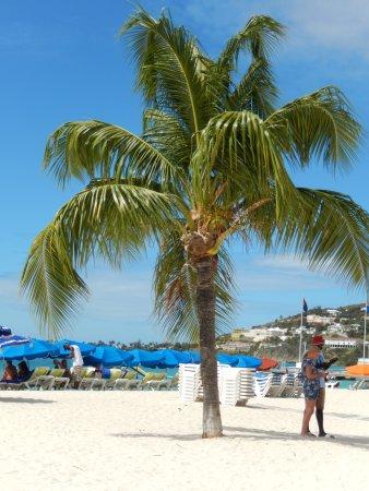 Great Bay Beach : Lovely beach