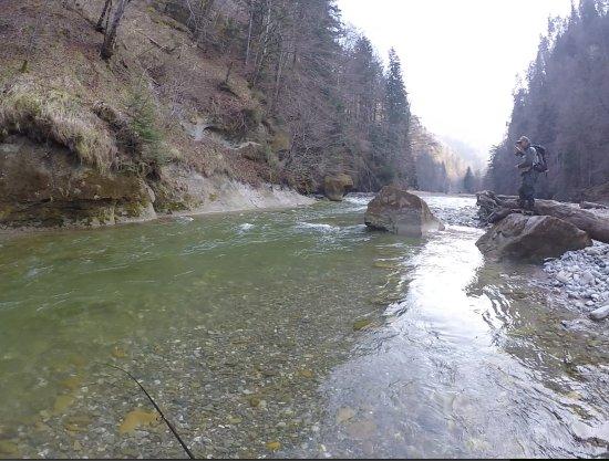 Wilderswil, สวิตเซอร์แลนด์: Sight fishing for Barbel