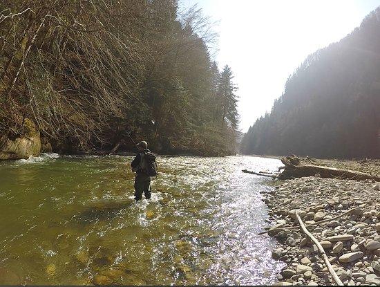 Wilderswil, สวิตเซอร์แลนด์: Secluded stream fishing