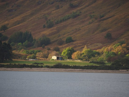 Huntingtower Lodge: The order side of the Loch from the room