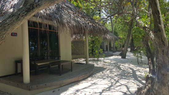 Ellaidhoo Maldives by Cinnamon: The beach bungalows