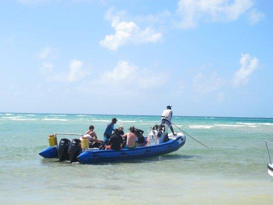 Vilanculos, Mozambique: Odissea Dive - Speed boat
