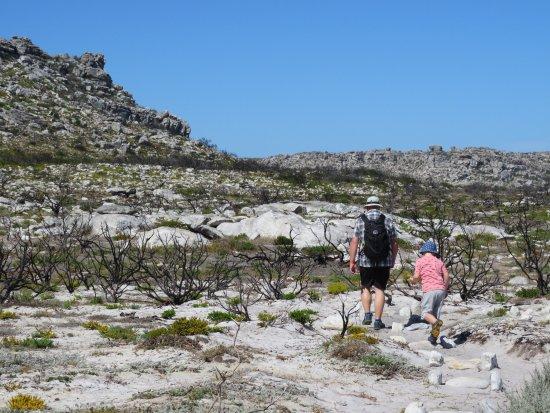 Cape Peninsula National Park, Sudáfrica: Thomas T Tucker Shipwreck Trail
