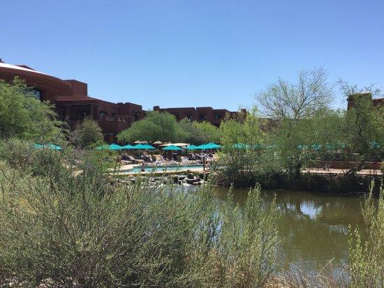 Chandler, AZ: photo1.jpg
