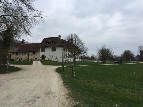 Erlach, Suiza: photo2.jpg