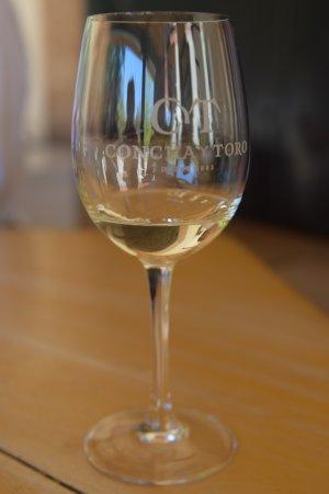 Pirque, Chile: Concha y Toro- e você leva essa taça para casa de brinde