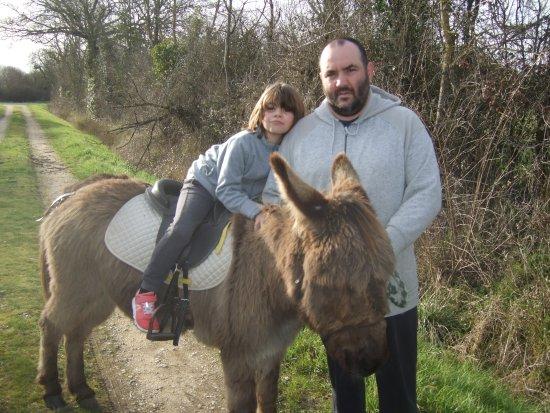 Relais des ânes