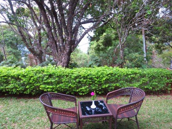 Ambady Estate: My favourite spot just outside the villa.