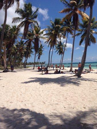 Bayahibe, Dominik Cumhuriyeti: Un giorno nella Favolosa Saona 🐚🏝🐠☀️