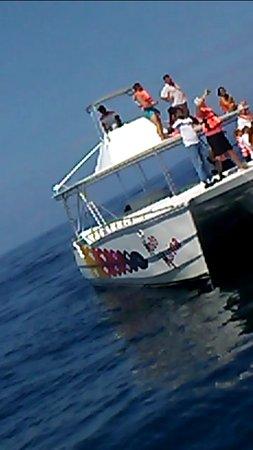 Santa Barbara de Samana, Dominican Republic: Catamaran of Moto Marina