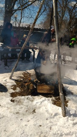 Harrow, Kanada: maple sap boiling