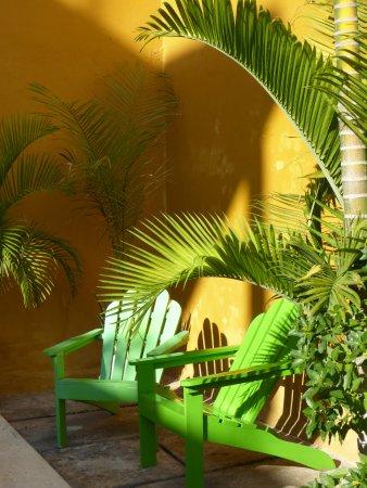 Luz En Yucatan-billede