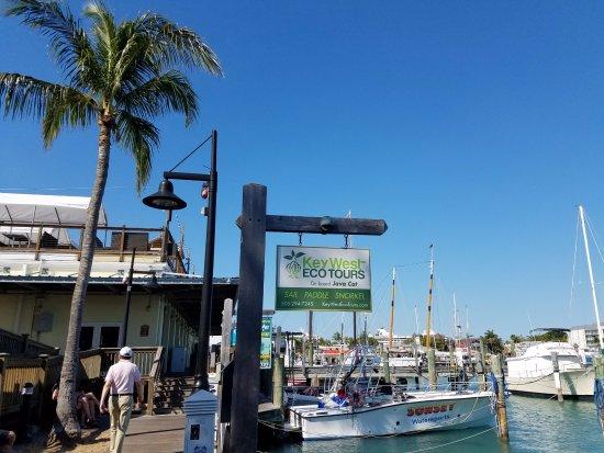 Key West Eco Tours: Eco Tours spot on the Marina, near Turtle Kraals restaurant